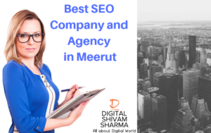 SEO Company, Agency and Services in Meerut